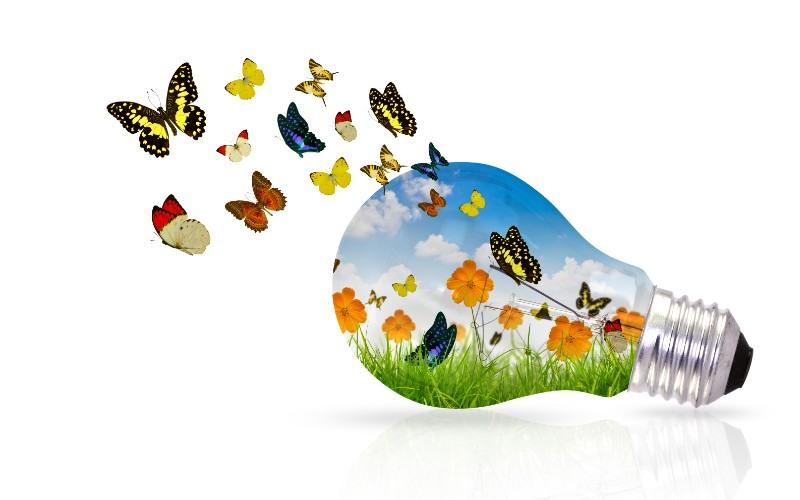Prácticas sencillas y sostenibles para ayudar al medio ambiente