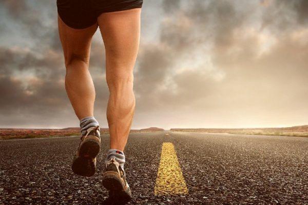 principales músculos de las piernas